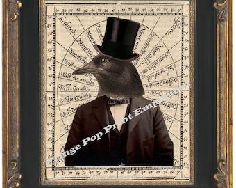 Victorian Raven Crow Man Art Print 8 x 10 - Altered Art - The Gentleman Mr. Crow in Top Hat
