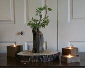 Reclaimed Cedar Fence Post Flower Vase - Rustic Cabin Decor
