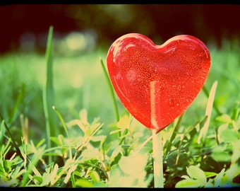 Spring Wedding Favor // 6 Raspberry Lemonade Lollipops // Heart Lollipops // Sweet and Tart // Fall Wedding Favors