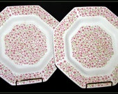 Mary Jane Pattern Octagon Ironstone Dinner Plates