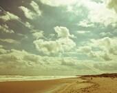 Fine Art Photography, Shark, Beach Photography Nature Photography Canvas or Photo Paper Photography Black Sea Beach 8x10 or 8x12