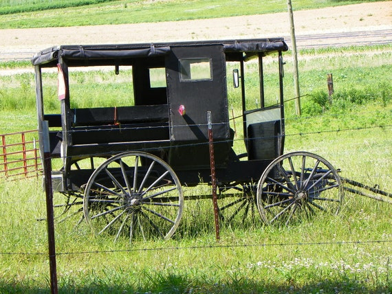Amish Buggy photograph / Amish Farm / Tennessee  / Photo Card / Yester Year