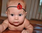 Lady Bug Baby Headband