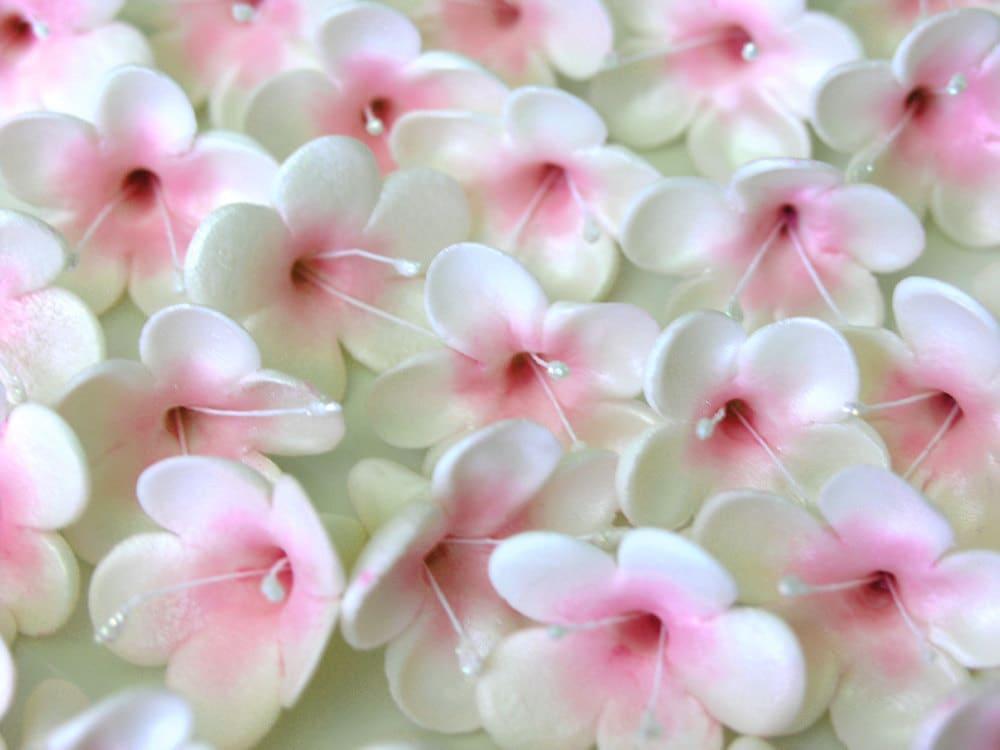 Cherry Blossom Edible Cake Decorations