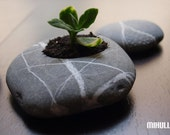 zen garden pottery - beach stone flower planter - pebble home decor