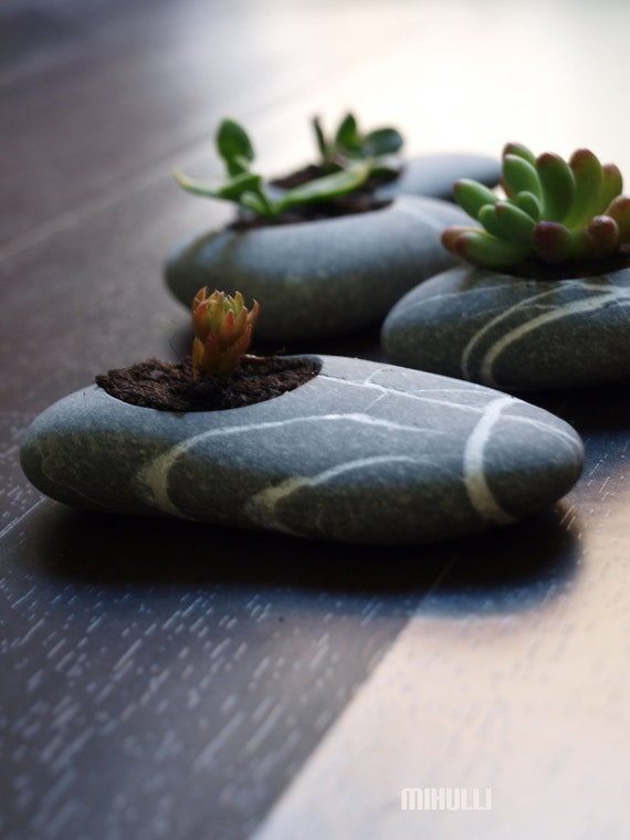 engraved beach stone flower planter zen garden. Black Bedroom Furniture Sets. Home Design Ideas