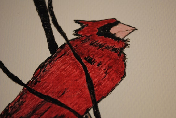 Winter Birds - Cardinal