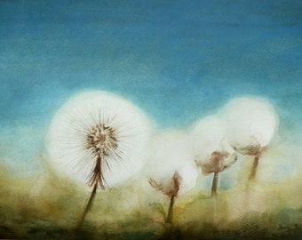 Mystery Dandelions Fine Art Watercolor Painting Nature Art - 9 x 13 inches