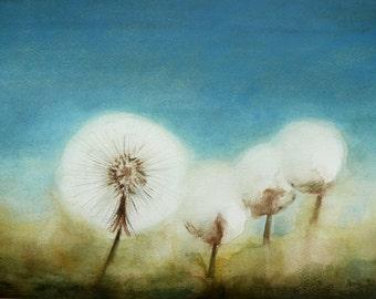 Unique Dandelion Painting, Watercolor Original Fine Art Painting, Nature Art, Wild Flowers Meadow, Small Painting on Paper, Home Decor