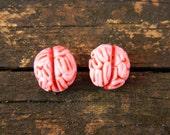 Brain studs