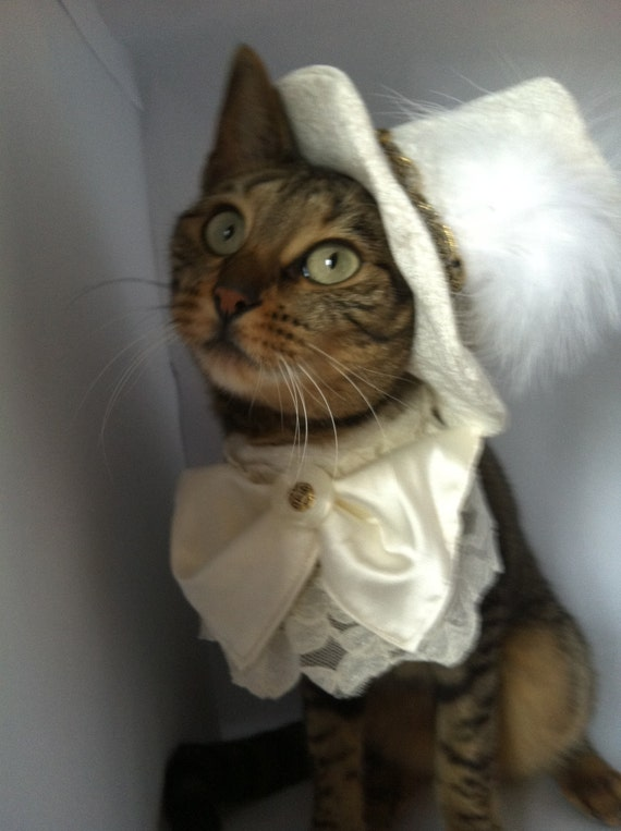Pet Wedding Costume for the Groom by FiercePetFashion