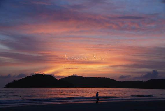 Beach Sunset Photo, Silhouette, Crimson Sky, 8x12, Tropical island photo, Malaysia, Wall decor, vacation, purple, pink, sunset, travel