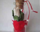 Valentine's Day Message in a Bottle