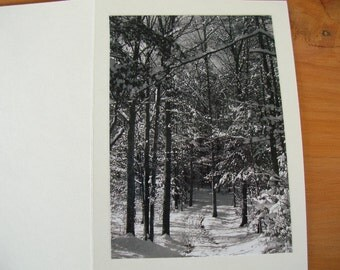 "Photo Note Cards Set of 6 Series ""Winter Snow"" Black and White Handmade LittlestSister"