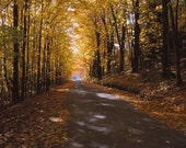 Photograph, Fall Foliage, New Hampshire, Fine Art Print