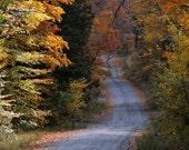 Photos, Fall Foliage, New England, 5 x 7 Fine Art Print
