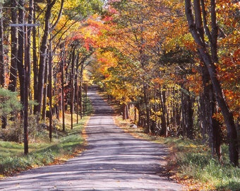 Fall Photography, Foliage, Vermont, New England