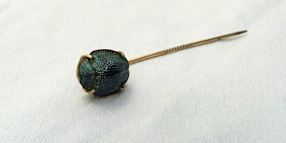 ANTIQUE Victorian Egyptian Revival Real Scarab Beetle and 10k Gold Stickpin / Tie Pin...Circa 1885