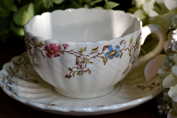 Vintage Copeland Spode Fine Bone China Tea Cup and Saucer, Wicker Dale Pattern, Floral, England
