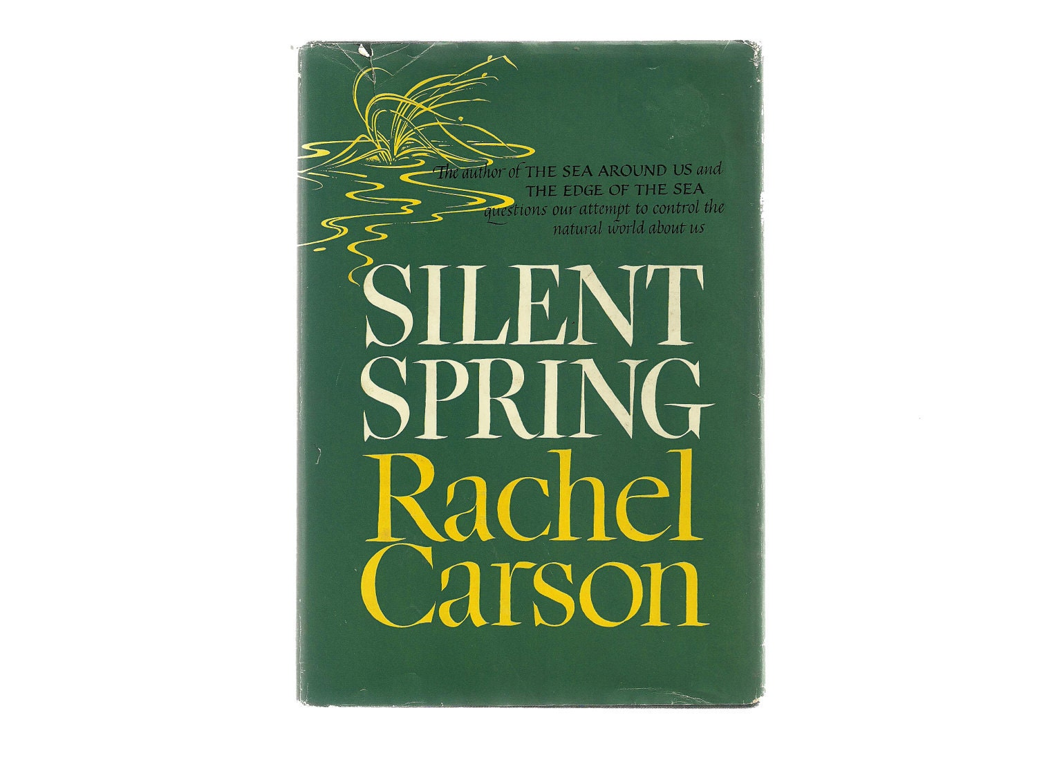 an analysis of rachel carson s silent