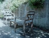 Garden Photo Fine Art Photograph - green decor dappled sunlight gray beige 8x8 8x10 8x12 11x14 16x20