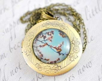 Cherry Blossoms Locket. Keepsake. Aqua Blue. Spring Flowers. Robin blue egg. Mothers Day
