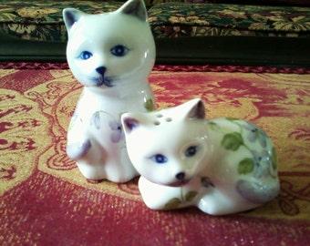 Kitten Salt and Pepper