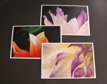 3 Floral Abstract Fine Art Photo Greeting Notecards With Envelopes