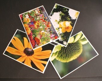 4 Spring Summer Flowers Fine Art Photo Greeting Notecards With Envelopes
