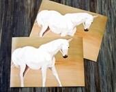 White Horse/Print