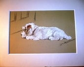 SEALYHAM TERRIER Signed mounted 1946 Lucy Dawson Mac White sealyham terrier dog plate print Christmas Thanksgiving gift present dog lover