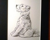 Vintage Mounted 1937 'Mac' Lucy Dawson Taffy Wire haired terrier dog plate/print  gift