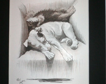 Bull terrier & Dachshund Signed mounted vintage 1930s Cecil Aldin dog plate print Unique Christmas Birthday Thanksgiving gift rare present