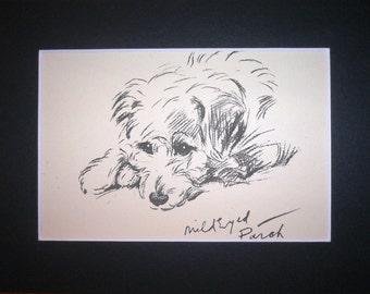 Vintage Mounted 1936 'Mac' Lucy Dawson Mild eyed Patch Sealyham terrier dog plate print Christmas Thanksgiving Birthday Anniversary gift
