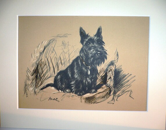 SCOTTISH TERRIER Signed mounted 1937 Lucy Dawson Creenagh Scottie terrier dog plate print Unique birthday anniversary celebration gift