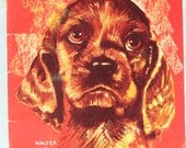 Walter T Foster Dog Drawing Instructional How To Book