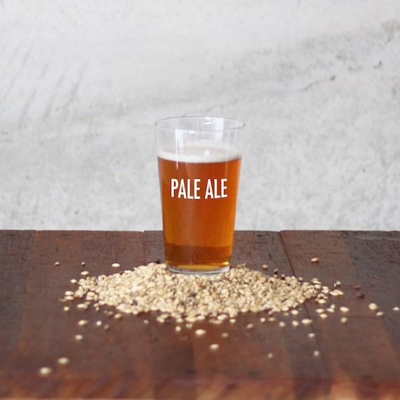 PALE ALE 3 Gallon Beer Brewing Recipe Kits / Homebrew Ingredient Kit / Brew in a Bag