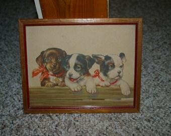 Antique Lithograph Print - 3 Puppies