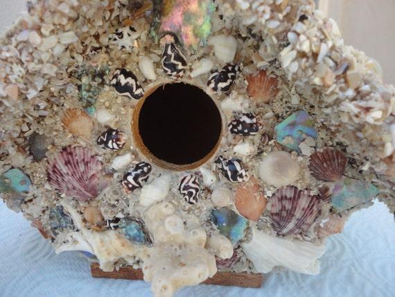 Sea shell birdhouse