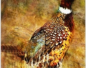 Pheasant Mouse Pad, Mouse pad, pheasant, wildlife,  Computer Mouse Pad, Rustic, Grunge Art, Computer Accessory, Office