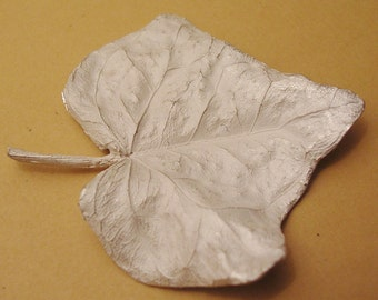 Large leaf casting, English ivy, sterling silver, cast botanical supplies UL030