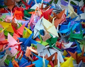The Thousand Paper Cranes 2 - 5x7 Fine Art Photography Print
