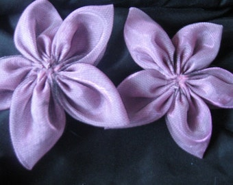 5-Petal Two-Tone Flowers