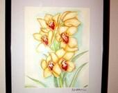 Yellow Cattleya Original Watercolor Orchid Framed