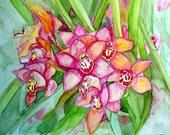 Pink Cymbidium Hawaiian Orchid Original Watercolor Painting