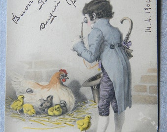 Easter Postcard 1906, Vienna, Signed - Chickens, Painting, Blue Gentleman's Costume - Easter Postcard, 1906