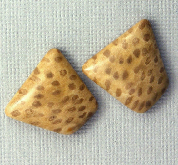 Petrified Palmwood Cabochon Pair - Hand Cut Freeform Designer Gemstone Cabochons