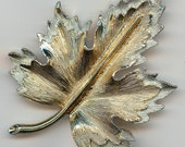Sarah Coventry Vintage Goldtone Brooch.