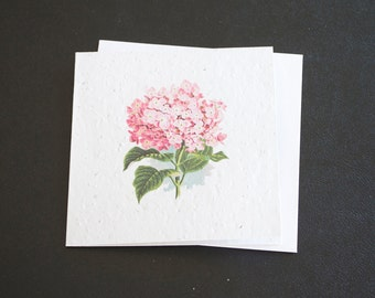 Beautiful Pink Hydrangea Flower / Eco-Friendly Plantable Seeded Card