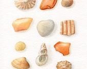 """Kergall Beach Finds... Original watercolor painting - Shades of yellow, orange and gray (6x8"""")"""